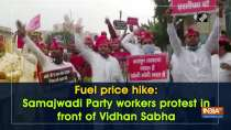 Fuel price hike: Samajhwadi Party workers protest in front of Vidhan Sabha