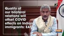 Quality of our bilateral relations will offset COVID effects on Indian immigrants: EAM