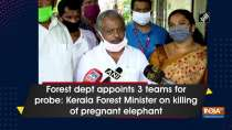 Forest dept appoints 3 teams for probe: Kerala Forest Minister on killing of pregnant elephant