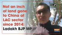 Not an inch of land gone to China at LAC sector since 2014: Ladakh BJP MP