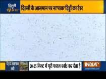 Delhi on high alert after swarm of locusts reache Gurugram