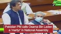 Pakistan PM calls Osama Bin Laden a
