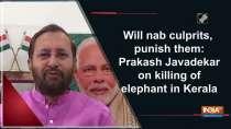 Will nab culprits, punish them: Prakash Javadekar on killing of elephant in Kerala