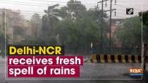 Delhi-NCR receives fresh spell of rains