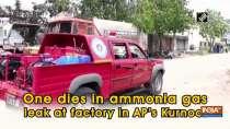 One dies in ammonia gas leak at factory in AP