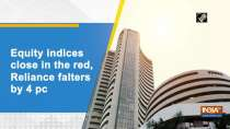 Equity indices close in the red, Reliance falters by 4 pc