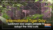 International Tiger Day: Lucknow zoo urges people to adopt the wild cats