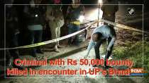 Criminal with Rs 50,000 bounty killed in encounter in UP
