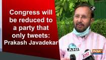 Congress will be reduced to a party that only tweets: Prakash Javadekar