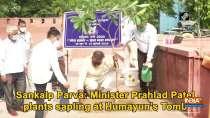 Sankalp Parva: Minister Prahlad Patel plants sapling at Humayun