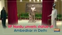 VP Naidu unveils statue of Ambedkar in Delhi