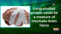 Long-studied protein could be a measure of traumatic brain injury