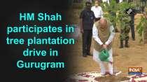 HM Shah participates in tree plantation drive in Gurugram