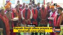 Watch: Rajnath Singh offers prayers at Amarnath cave shrine