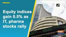 Equity indices gain 0.5% as IT, pharma stocks rally