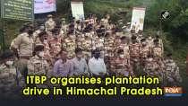 ITBP organises plantation drive in Himachal Pradesh