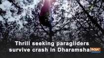 Thrill seeking paragliders survive crash in Dharamshala