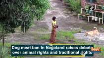 Dog meat ban in Nagaland raises debate over animal rights and traditional rights