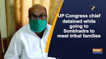 UP Congress chief detained while going to Sonbhadra to meet tribal families