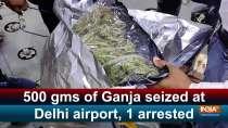 500 gms of Ganja seized at Delhi airport, 1 arrested