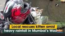 Local rescues kitten amid heavy rainfall in Mumbai