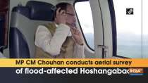 MP CM Chouhan conducts aerial survey of flood-affected Hoshangabad