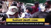 Sushant death case: SSR