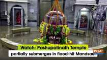 Watch: Pashupatinath Temple partially submerges in flood-hit Mandsaur
