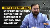 World Elephant Day: Environment Ministry committed for betterment of jumbos, says Javadekar