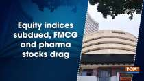 Equity indices subdued, FMCG and pharma stocks drag