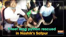 7-feet long python rescued in Nashik