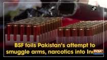 BSF foils Pakistan