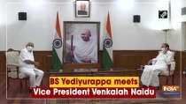 BS Yediyurappa meets Vice President Venkaiah Naidu