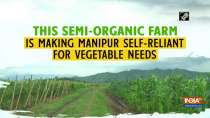 This semi-organic farm is making Manipur self-reliant for vegetable needs