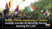 Watch: Tibetan community in Shimla boosts morale of security forces leaving for LAC