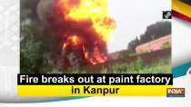 Fire breaks out at paint factory in Kanpur