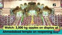 Watch: 3,000 kg apples on display at Ahmedabad temple on reopening day