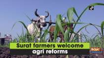 Surat farmers welcome agri reforms