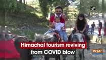 Himachal tourism reviving from COVID blow