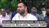 Issues like unemployment, migration relevant for Bihar polls: Tejashwi Yadav