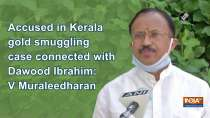 Accused in Kerala gold smuggling case connected with Dawood Ibrahim: V Muraleedharan