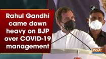 Rahul Gandhi came down heavy on BJP over COVID-19 management