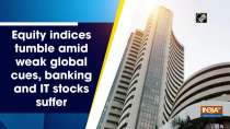 Equity indices tumble amid weak global cues, banking and IT stocks suffer