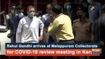 Rahul Gandhi arrives at Malappuram Collectorate for COVID-19 review meeting in Kerala