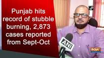 Punjab hits record of stubble burning, 2,873 cases reported from Sept-Oct