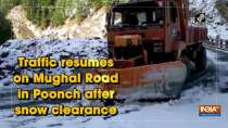Traffic resumes on Mughal Road in Poonch after snow clearance