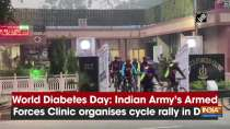 World Diabetes Day: Indian Army
