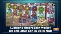 Ludhiana firecracker market blooms after ban in Delhi-NCR