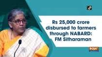 Rs 25,000 crore disbursed to farmers through NABARD: FM Sitharaman
