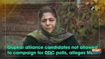 Gupkar alliance candidates not allowed to campaign for DDC polls, alleges Mufti